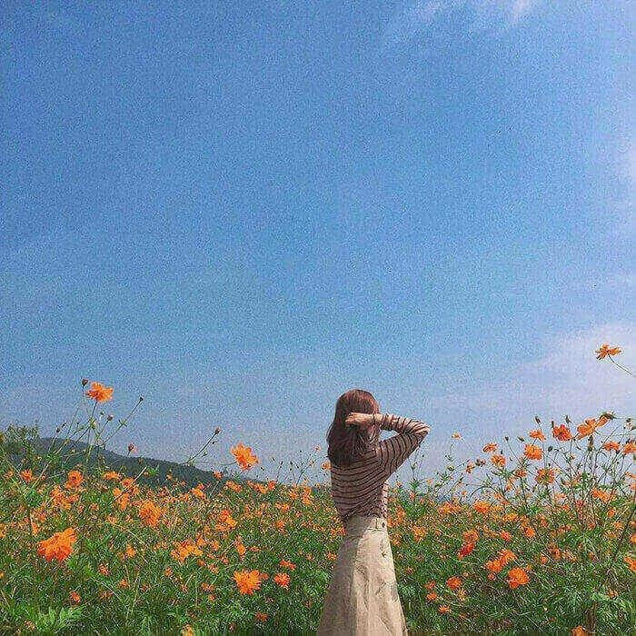 Hướng dẫn 10 cách chụp ảnh siêu xịn, không chê vào đâu được